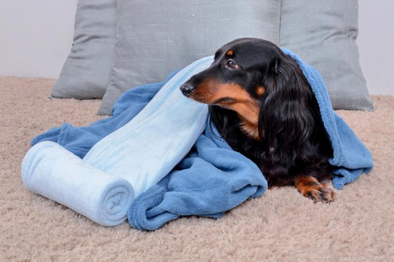 Cobertor Microfibra para Berço